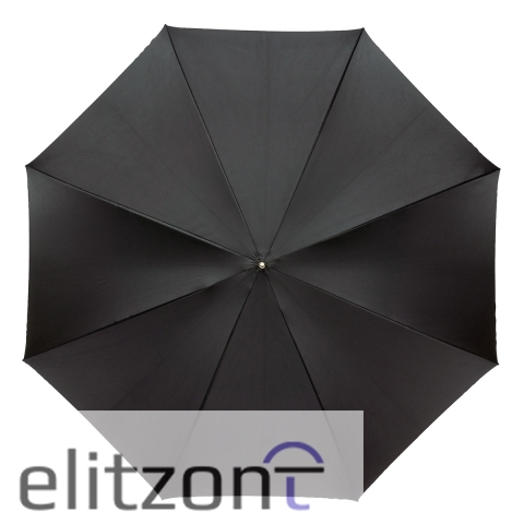 Зонт-трость Pasotti Nero Motivi Fiore Viola Lux