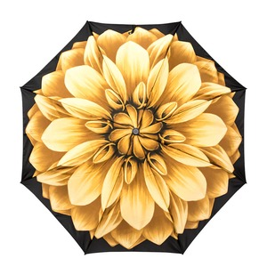 Зонт складной Pasotti Mini Georgin Giallo фото-1