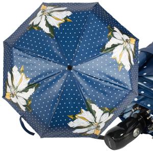 Зонт складной Ferre 6032-OC Ali Dioro Blu фото-1
