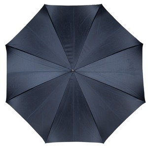 Зонт-трость Pasotti Blu Butterfly Biruza Original фото-2