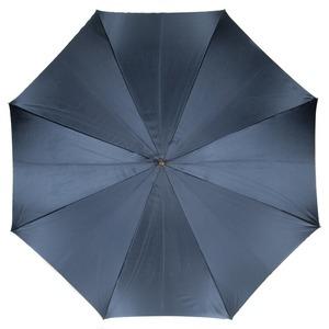 Зонт-трость Pasotti Blu Georgin Spring фото-2