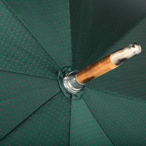 Зонт-трость Pasotti Cervo Punto Verde фото-3