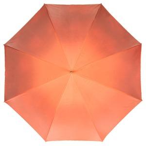 Зонт-трость Pasotti Orange Vivo Plastica фото-2