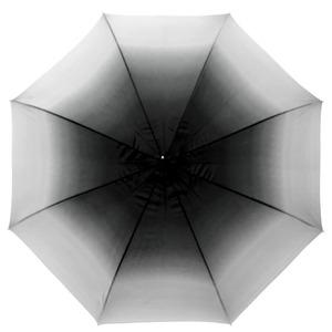 Зонт-Трость Pasotti Becolore Grigio Tiger Plastica Pico фото-2