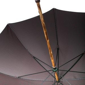 Зонт-трость Pasotti Cervo Punto Verde фото-4