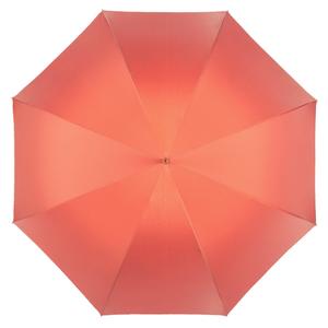 Зонт-трость Pasotti Coral Calendula Oro фото-2
