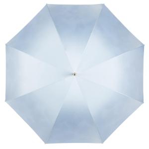 Зонт-трость Pasotti Sky Butterfly Rapira Oro фото-2