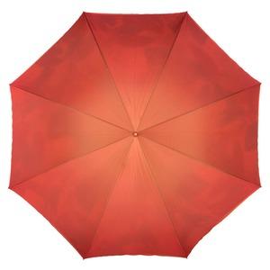 Зонт-трость Pasotti Terracotta Felce Bamboo фото-2