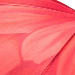 Зонт трость Pasotti Uno Georgin Koral Classic фото-3