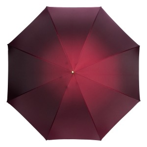 Зонт-трость Pasotti Bordo Cinese Globe фото-2