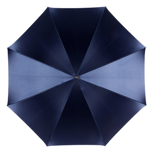 Зонт-трость Pasotti Blu Makro Spring фото-2