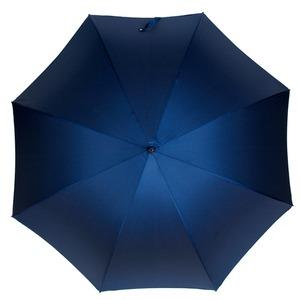 Зонт-трость Pasotti Eagle Gold Oxford Blu  фото-2